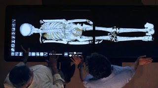 Tutankhamun - Death