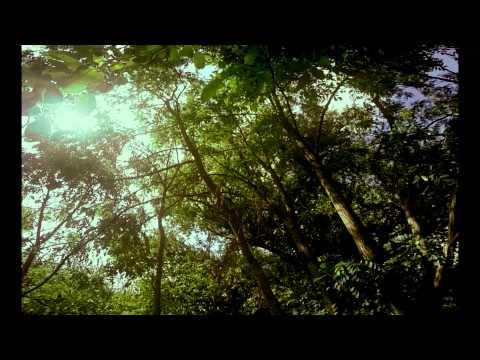 Arid Garden - Full DVD Live Concert [2014] online metal music video by ARID GARDEN