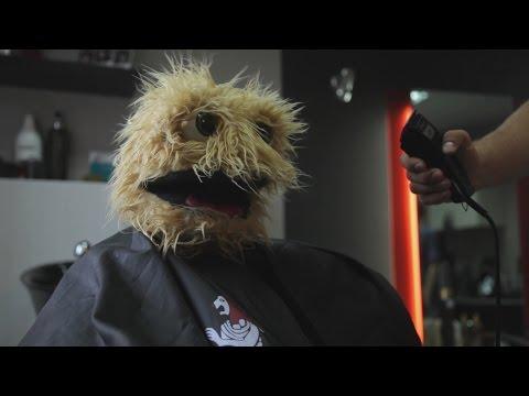 Tää kun et ole käynyt vuoteen parturissa
