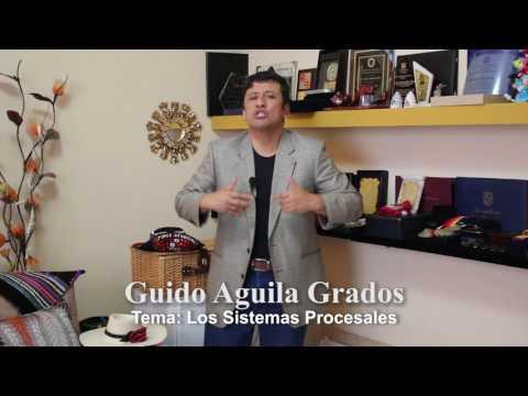 Programa 16 - Los sistemas procesales - Tribuna Constitucional - Guido Aguila