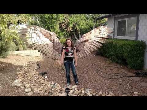 Une paire d'ailes pneumatiques