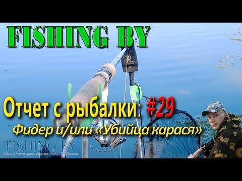 рыбалка ловля на убийцу карася