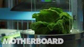 宇宙空間で新鮮な野菜を 不可能を可能にするガーデニング・ロボット