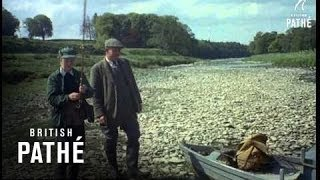 Kelso United Kingdom  City new picture : Fly Fishing (1955)