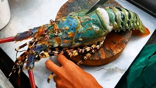 Video Thailand Street Food - The BIGGEST RAINBOW LOBSTER Cooked with Butter & Cheese MP3, 3GP, MP4, WEBM, AVI, FLV Juni 2019