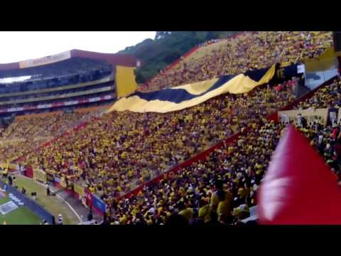 La gran hinchada del Barcelona sporting club - Zona Norte - Barcelona Sporting Club