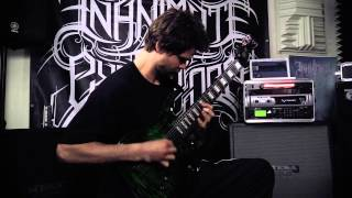 Inanimate Existence - Staring Through Fire (Official Guitar Play-Through)
