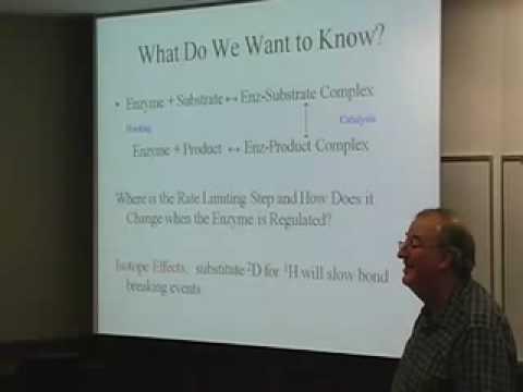 HHMI Forschung Einführung: Ellis Bell