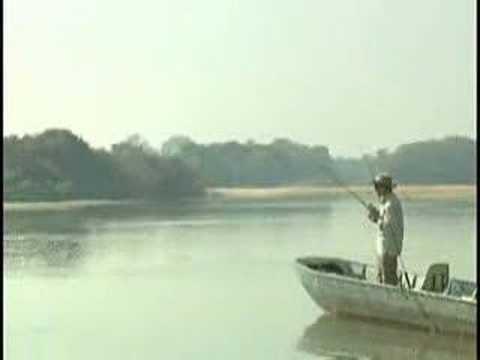 Lusca Pacheco Pescaria de cachorras - Rio Kuluene