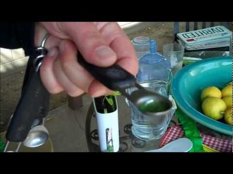 The Kratky Hydroponic Test - Romaine Lettuce