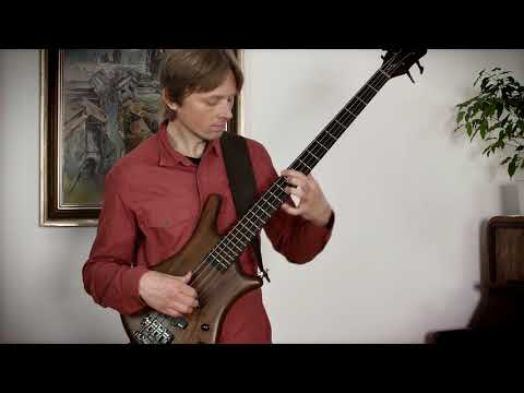 Tomáš Kedzior - baskytara - Tomáš Kedzior (bass) - DARU