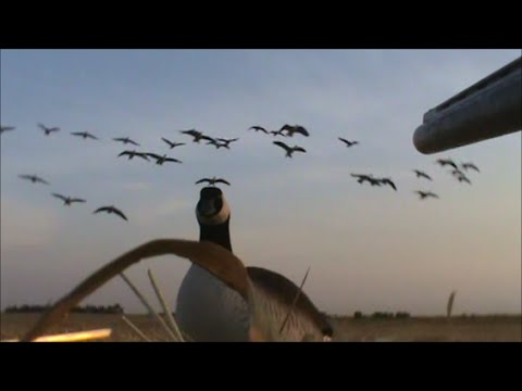 Waterfowl Hunting Recap 2013