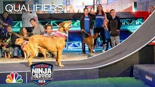Adorable Pups Climb the Doggy Warped Wall - American Ninja Warrior Atlanta City Qualifiers 2019