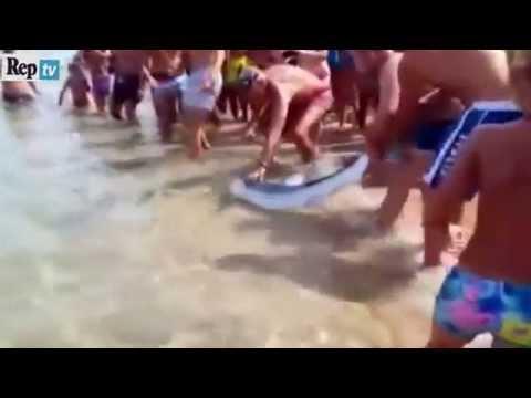 squalo salvato dai bagnanti nelle spiagge in sardegna!