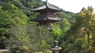 Shinto and Buddhism in Japam