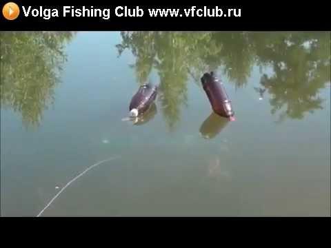 ловля рыбы на бутылку видео