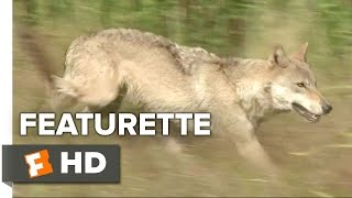 Nonton Wolf Totem Featurette   Environment  2015    Jean Jacques Annaud Movie Hd Film Subtitle Indonesia Streaming Movie Download