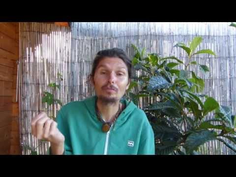 comment regler la myopie
