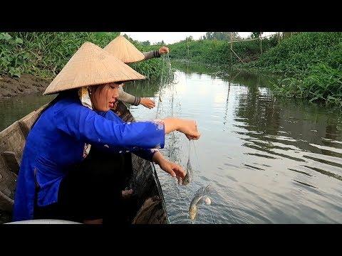 Buổi Chiều Giăng Lưới Dính 40 Con Cá không thể nào ăn hết | Thôn Nữ Miền Tây Tập 122 - Thời lượng: 30:50.
