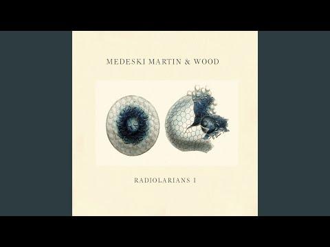 Medeski, Martin & Wood – Radiolarians I (Full Album)