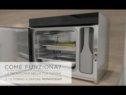 Come Funziona? La scienza nella tua cucina - 2.1 Il Forno a Vapore