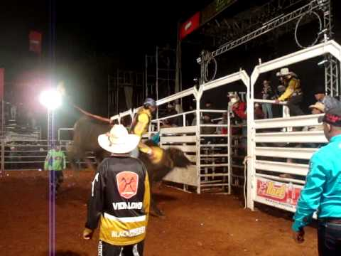 Reuel Amaro vs Cia Fabio Salvador- Rodeio Brasilândia do Sul