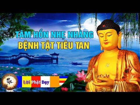 Tâm Hồn Nhẹ Nhàng - Bệnh Tật Tiêu Tan Bởi Lắng Nghe Điều Này Mỗi Tối | Phật Pháp Nhiệm Màu - Thời lượng: 1 giờ, 10 phút.