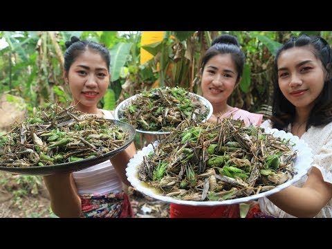 Yummy Cooking Grasshopper With Salt Recipe - Cooking Skill