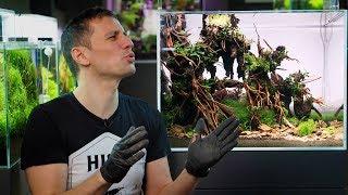 Video PLANTED AQUARIUM SETUP - A SPECTACULAR FOREST AQUASCAPE IN JUST 80 LITERS MP3, 3GP, MP4, WEBM, AVI, FLV Agustus 2019