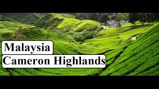 Cameron Highlands Malaysia  City new picture : Malaysia-Beautiful Cameron Highlands Part 8
