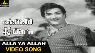 Alla Ya Alla Video Song - Ali Baba 40 Dhonaglu (NTR, Jayalalitha) - 720p