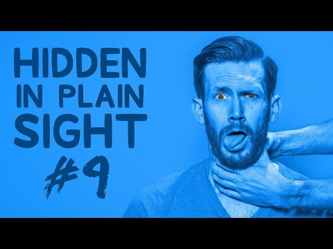Can You Find Him in This Video? • Hidden in Plain Sight #9