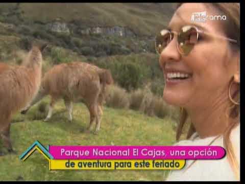 Parque Nacional El Cajas una opción de aventura para este feriado