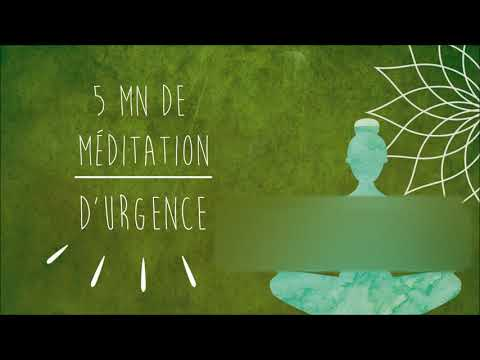 Méditation d'urgence :  Crise d'Angoisse, d'Anxiété, Attaque de Panique