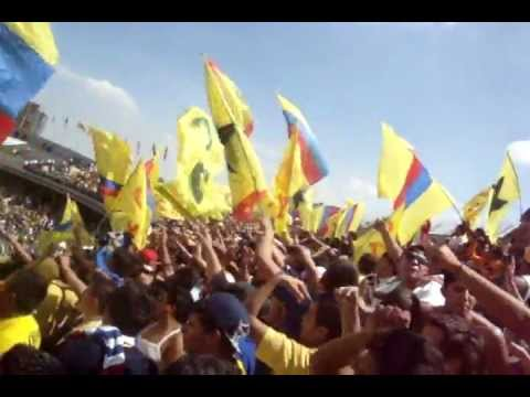 La Barra azulcrema: Les ganamos a los pumas! - La Monumental - América