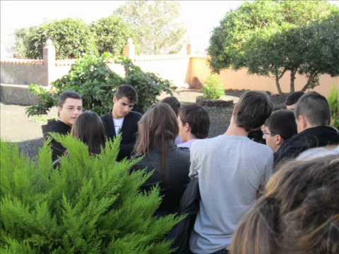 IES Puerto del rosario y ies la oliva viaje a las Palmas
