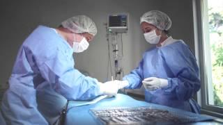 Vet Medicine Veteriner Tanı ve Tedavi Merkezi Münci Utancak - Fulya Özbilgen