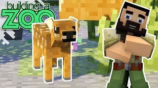 I'm Building A Zoo In Minecraft! - So Cute! - EP25