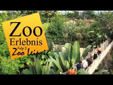 Leipzig: Zoo Leipzig - Zoo Erlebnis #2