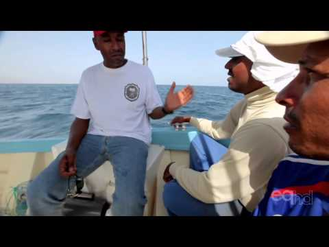 oman - I Have Seen the Earth Change Season 2 Oman documentary HD A picture of how fishers and farmers are affected by the changing oceans and more intensive storms....