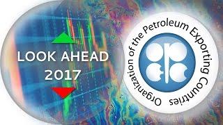 2016 was a big year for OPEC and a much better year for the price, as a production freeze was agreed upon and the price surged...