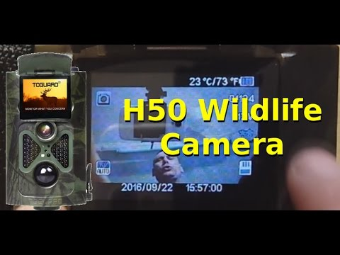 Full Review:  H50 Toguard Wildlife Hunting Camera