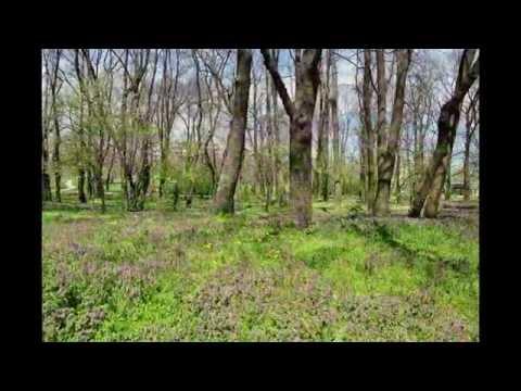 Video of 10 Coins Hostel Sofia