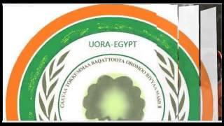 Hiraar, gidiraa, rakkoo fii cinqi ilmaan Oromoo biyya ambaa..