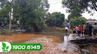 Nông nghiệp | Lào Cai: Cuộc sống người dân bị đảo lộn vì bùn thải