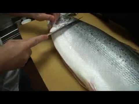 How To Fillet a Whole Salmon - How To Make Sushi Series
