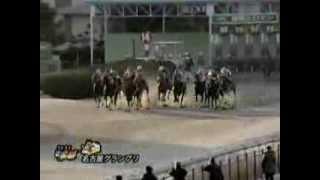2013年名古屋グランプリ