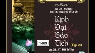 22/31, Pháp hội: Nhập Phật Cảnh Giới Trí Quang Minh Trang Nghiêm (HQ) | Kinh Đại Bảo Tích tập 07