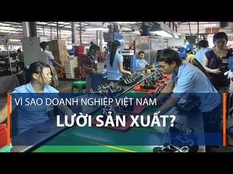 Vì sao doanh nghiệp Việt Nam lười sản xuất? | VTC1 - Thời lượng: 2 phút, 43 giây.