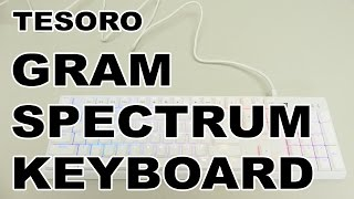 The Tesoro Gram Spectrum RGB Mechanical Gaming Keyboard is fully programmable, there are 16.8 million colors to choose from with many lightening effects and is available in white and black. This keyboard uses the new Tesoro AGILE key switches which are accurate and responsive and they have low-profile keycaps to boot! ~#1802 http://3dgameman.com/reviews/1802/tesoro-gram-spectrum-rgb-mechanical-gaming-keyboardPrice Grabber: http://3dgameman.pgpartner.com/search_attrib.php?page_id=327&form_keyword=Tesoro%2BGram%2BSpectrum%2BRGB%2BMechanical%2BGaming%2BKeyboard&rd_type=C&rd=1Info/Comments: http://3dgameman.com/reviews/1802/tesoro-gram-spectrum-rgb-mechanical-gaming-keyboardFor sponsorship and other inquiries, please email gameman@3dgameman.comSOCIAL:Facebook: https://www.facebook.com/3dGameManTwitter: https://twitter.com/3dGameManSteam: http://steamcommunity.com/groups/3dGameManThanks for liking, subscribing and sharing :)